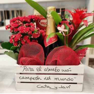 C9-PLANTAS CON CAVA Y CHOCOLATE 55 EUROS