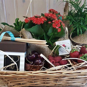 Floristería Rosa Rosam - Cesta de plantas, frutos rojos y vela