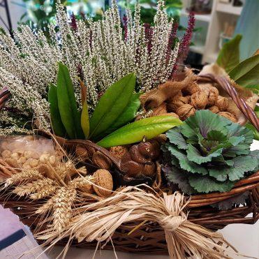 Floristería Rosa Rosam - Cesta de plantas y frutos secos